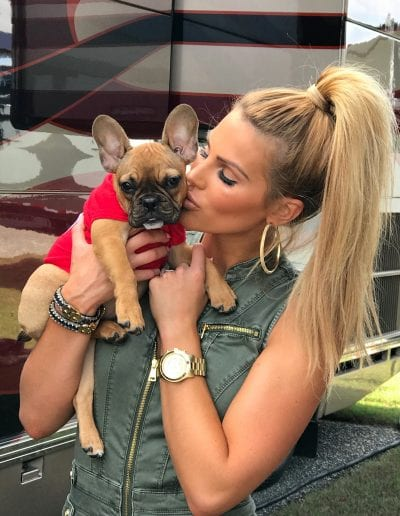 french bulldog puppy in a red shirt with model