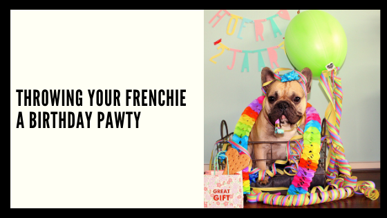 Throwing Your Frenchie a Birthday Pawty