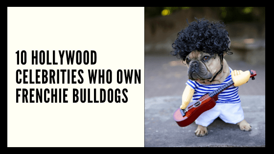 11 HOLLYWOOD CELEBRITIES WHO OWN FRENCHIE BULLDOGS
