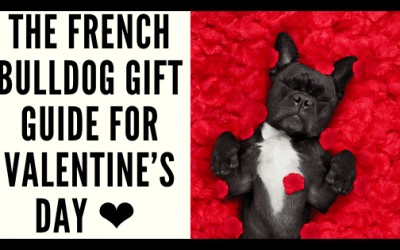 The French Bulldog Gift Guide for Valentine's Day ❤️