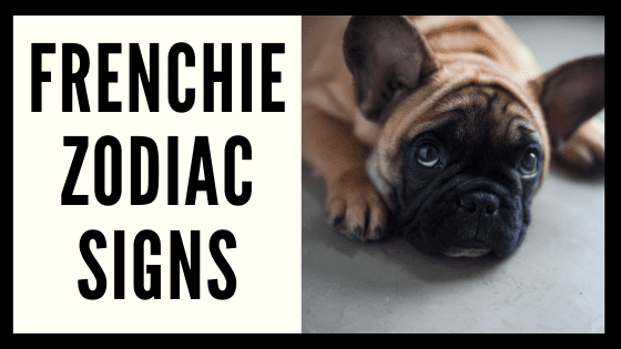 Frenchie Zodiac Sign