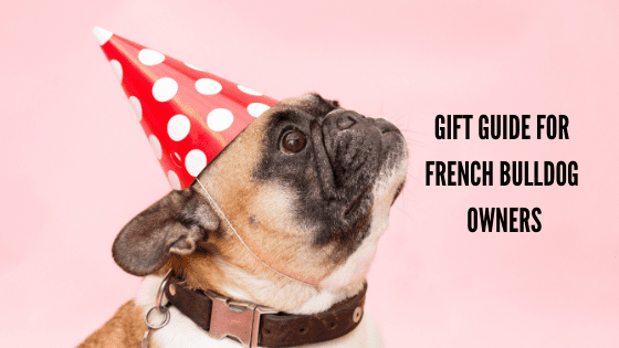 A Gift Guide for French Bulldog Owners